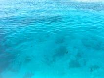 Havsvatten och krusningar royaltyfri foto