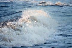 havswave Arkivfoton