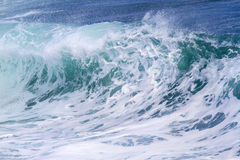 Havvåg Arkivbilder
