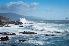 Havvåg förbi kusten på stor surhuvudväg 1 fotografering för bildbyråer
