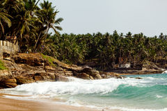 Havvåg med Rocky Cliffs And Palm Trees Arkivbilder