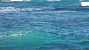 Havvågor nära stöttar stock video