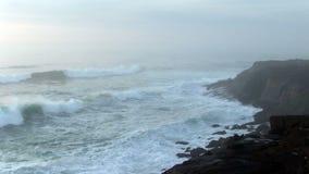 Havvågor som slår Lava Rock Shore Flying Seagulls arkivfilmer