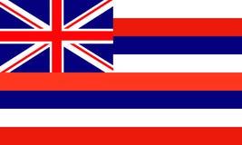 hawaï illustration de vecteur