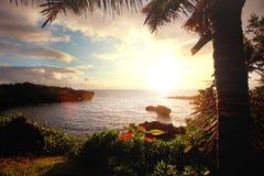 hawaï royalty-vrije stock afbeeldingen