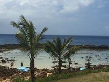 hawaï Royalty-vrije Stock Afbeelding