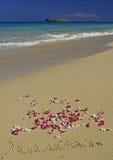 Hawaï dat in Zand op Hawaiiaans Strand wordt geschreven Stock Foto's