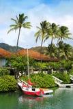 Hawaï Kai Royalty-vrije Stock Foto