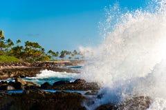 Hawaï, Oahu Images libres de droits