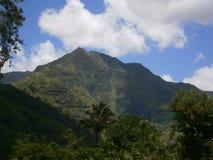 Hawaï op mijn mening Royalty-vrije Stock Afbeelding