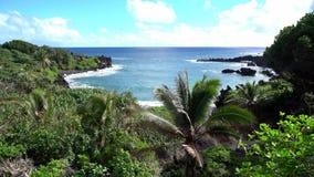 Hawaï overziet van Oceaan stock video