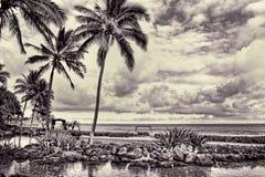 Hawaï Pardise avec la vue d'océan Photo libre de droits