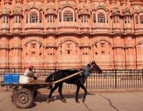 Hawa Mahal i jaipur. Indien. Royaltyfri Foto