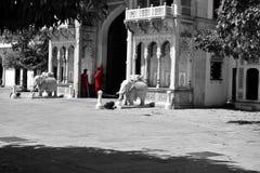 Hawa Mahal, indie de Jaipur, dentro Fotos de archivo