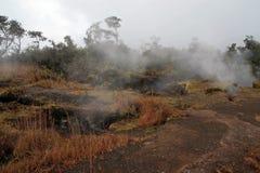 """HawaiÊ"""" mim parque nacional dos vulcões Imagem de Stock Royalty Free"""