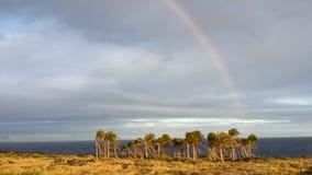 Hawai& x27; i arcobaleno Fotografia Stock