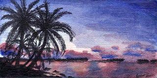 hawai mig Fotografering för Bildbyråer