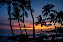 Hawai sunet Stock Photo