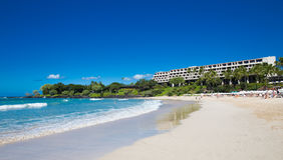 Hawaian海滩 免版税库存图片
