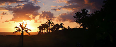 Hawaian beach sunrise panorama Royalty Free Stock Photo