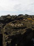 Hawaiana blanca del encanto de las cáscaras en Lava Rock en Hawaii fotos de archivo libres de regalías