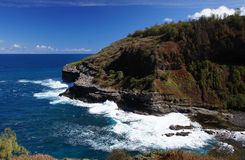 Hawaiansk kust, USA Arkivbilder