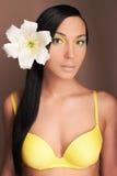 Hawaiansk kvinna med blomman Sexig flicka i bikini Royaltyfri Fotografi