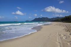 Hawaiansk tropisk strand fotografering för bildbyråer