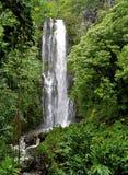 hawaiansk vattenfall arkivbilder
