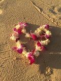 Hawaianska lei av orkidér blommar på sand under solnedgångsolen Arkivfoton
