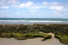 Hawaianska Oceanview arkivfoto