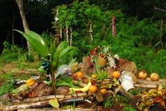 hawaianska offerings Royaltyfri Fotografi