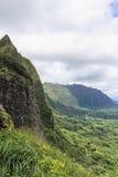 Hawaianskt berglandskap arkivfoto