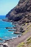 Hawaiiâs tropische Küstenlinie Stockfotografie