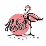 hawaii литерность фламинго Заход солнца логос Путешествия Каникулы Добро пожаловать карточка Туристическая индустрия вектор бесплатная иллюстрация