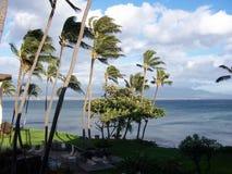 Hawaii - 18 Royalty Free Stock Photography