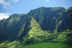 Hawaii Lizenzfreie Stockfotos