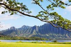 Hawaii. Tropical landscapes on Oahu island, Hawaii Royalty Free Stock Image