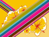 Hawaii. Background with tropical flowers and color lines stock illustration