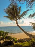 Hawaii Beach with Palm Trees and Blue Sky. Afternoon on the beach in Hawaii. Clouds clear water. Ocean Breeze stock photo
