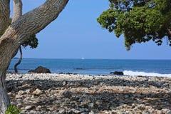 Hawaii beach Stock Images