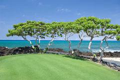 Hawaii Beach Scene. View of the Pacific ocean from a golf course on the Big Island of Hawaii stock photos