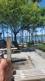 Hawaii. A beautiful day in Hawaii Royalty Free Stock Photos