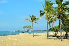 Hawaii, Big Island royalty free stock photos