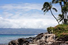 Hawaii coastal scenery. Hawaii beach scene with coconut trees and shoreline Stock Photography