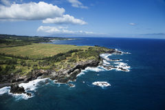 Hawaii coastline. Aerial view of rocky Maui, Hawaii coastline with crop fields Stock Photos