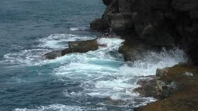 Hawaii coastline battered by the Pacific ocean stock video footage