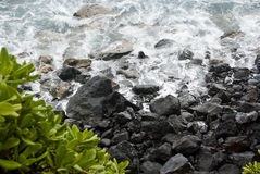 Hawaii Coastline Stock Photography