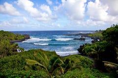 hawaii dżungli morze Fotografia Stock