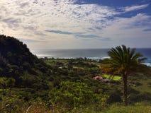 Hawaii djungel Fotografering för Bildbyråer